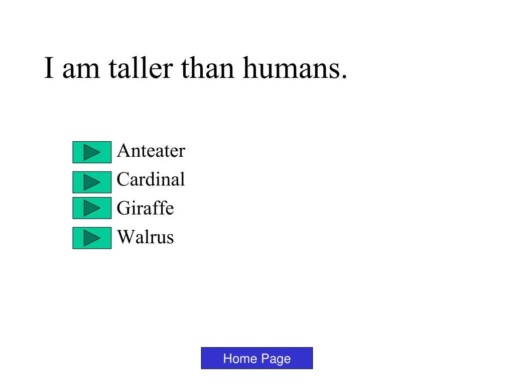 I am taller than humans.
