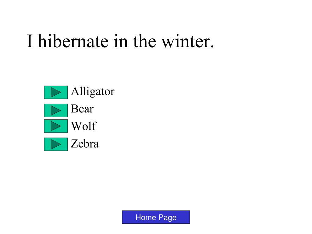 I hibernate in the winter.