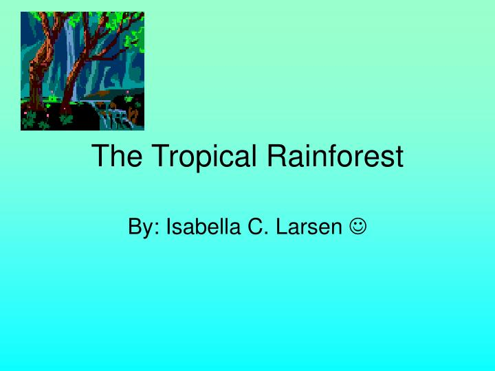 The tropical rainforest l.jpg