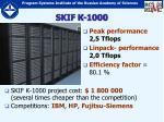 skif 100013