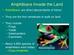 amphibians invade the land