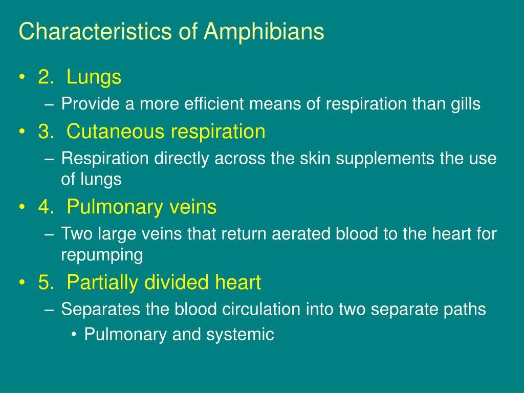 Characteristics of Amphibians