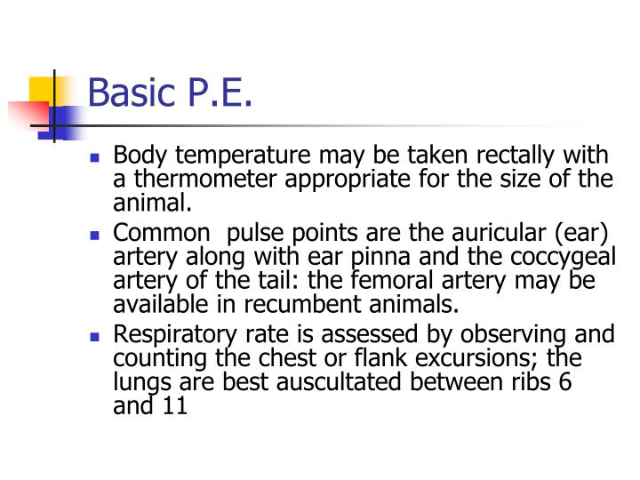 Basic P.E.