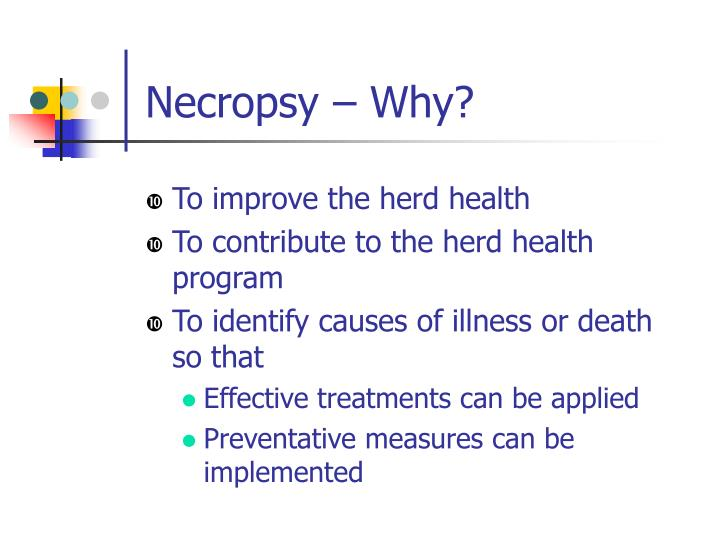 Necropsy – Why?