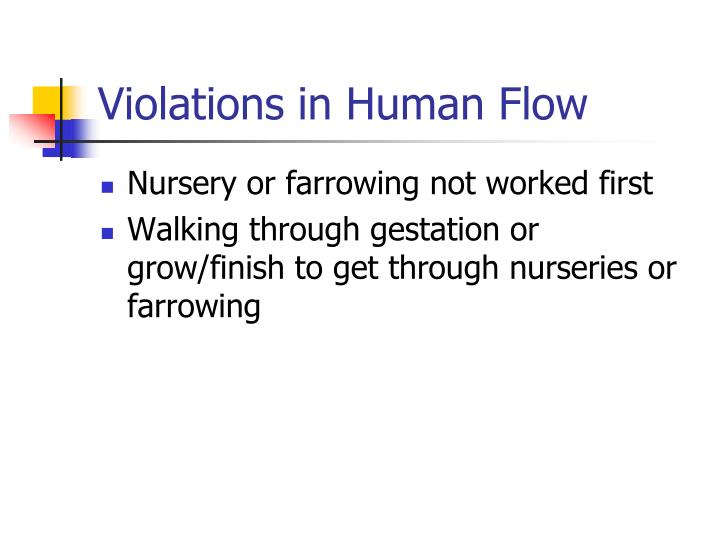 Violations in Human Flow