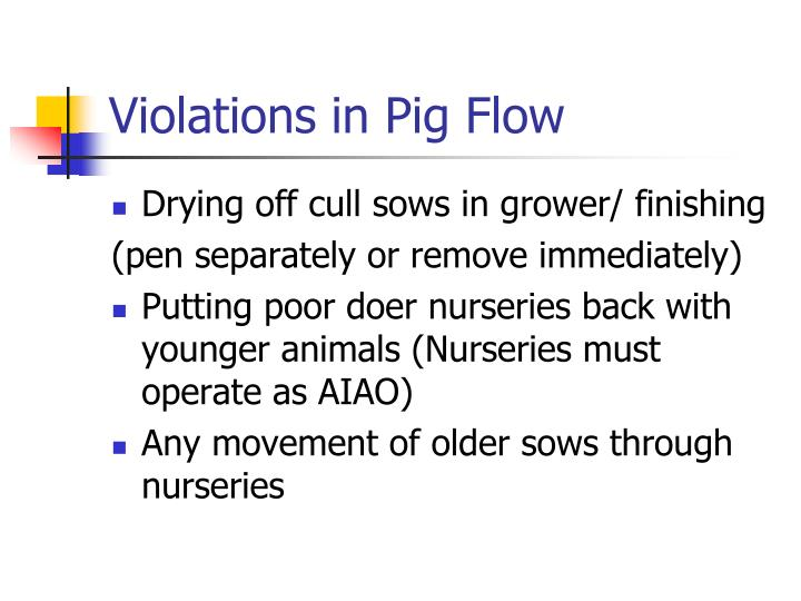 Violations in Pig Flow