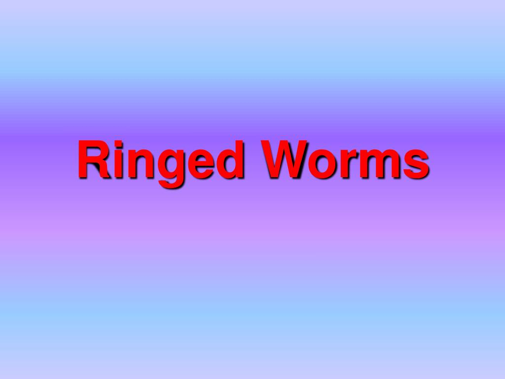 Ringed Worms