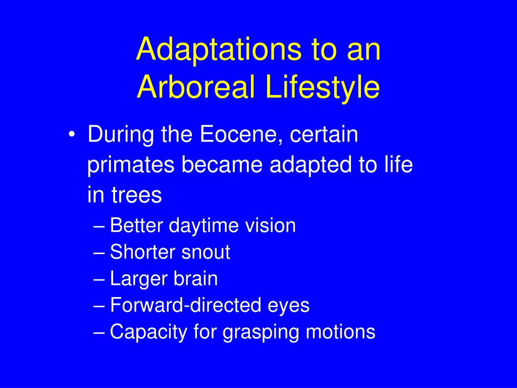 Adaptations to an