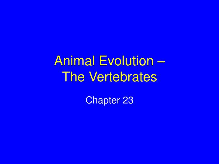 Animal evolution the vertebrates l.jpg