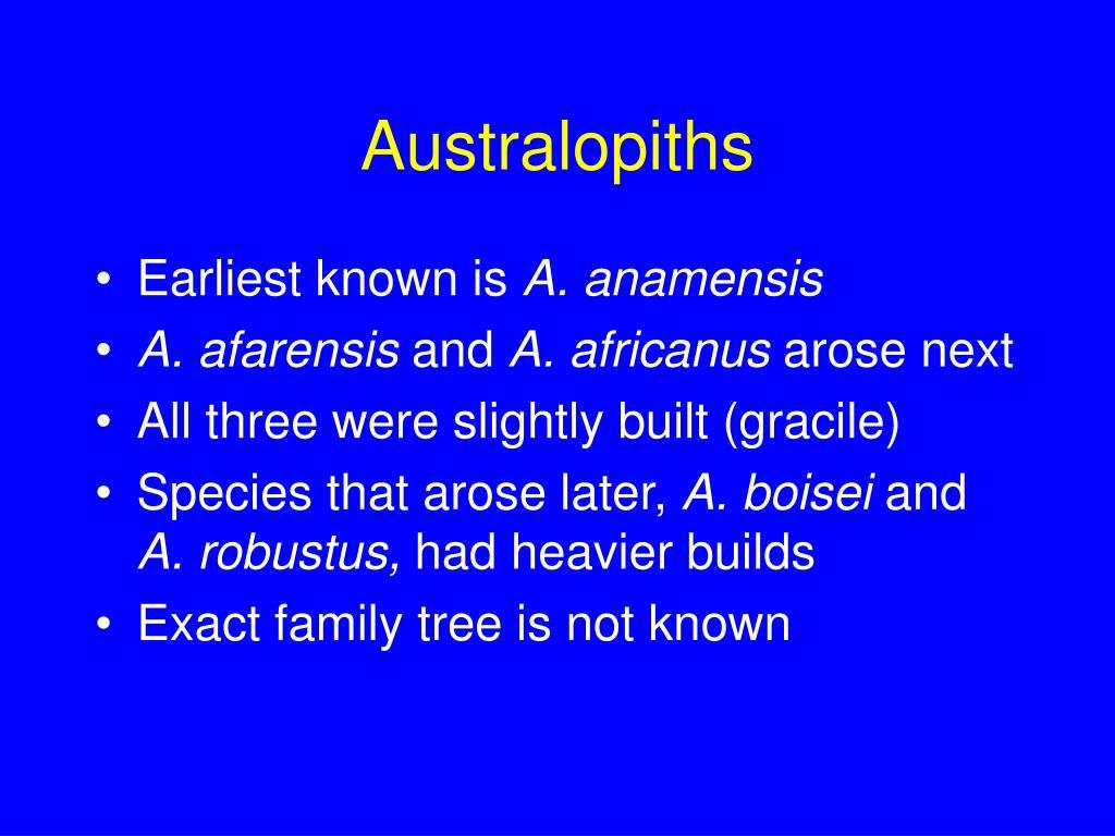 Australopiths
