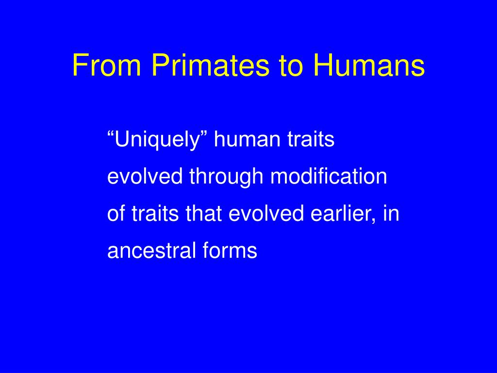 From Primates to Humans