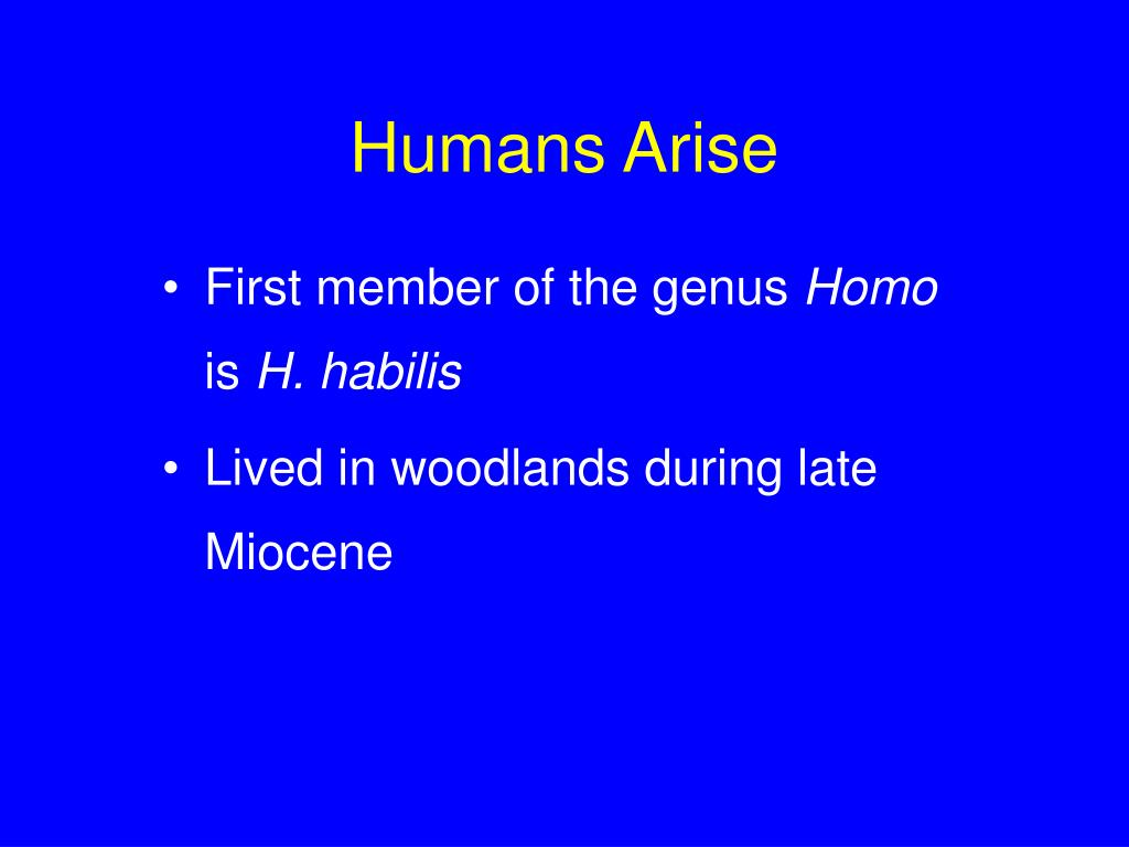 Humans Arise
