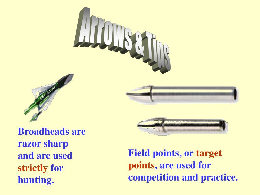 Arrows & Tips