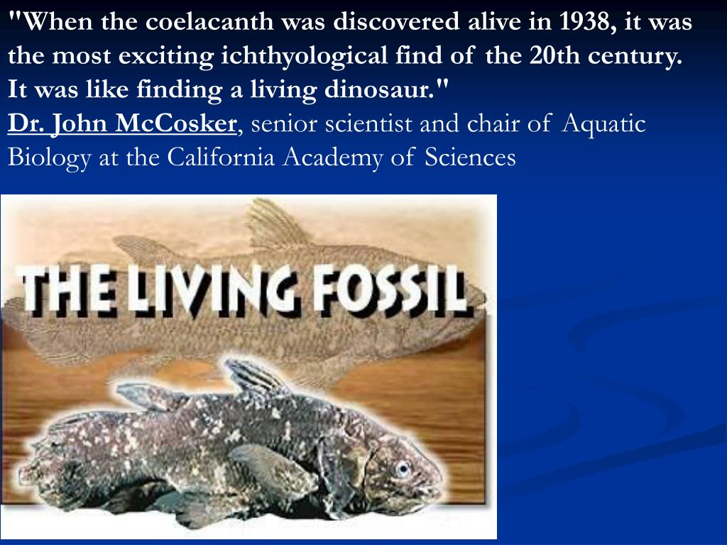 """When the coelacanth was discovered alive in 1938, it was the most exciting ichthyological find of the 20th century. It was like finding a living dinosaur."""