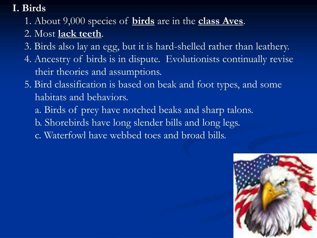 I. Birds