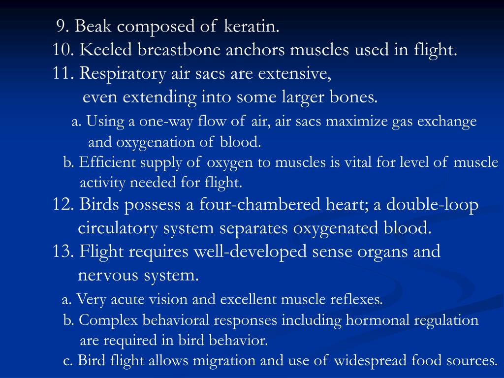 9. Beak composed of keratin.