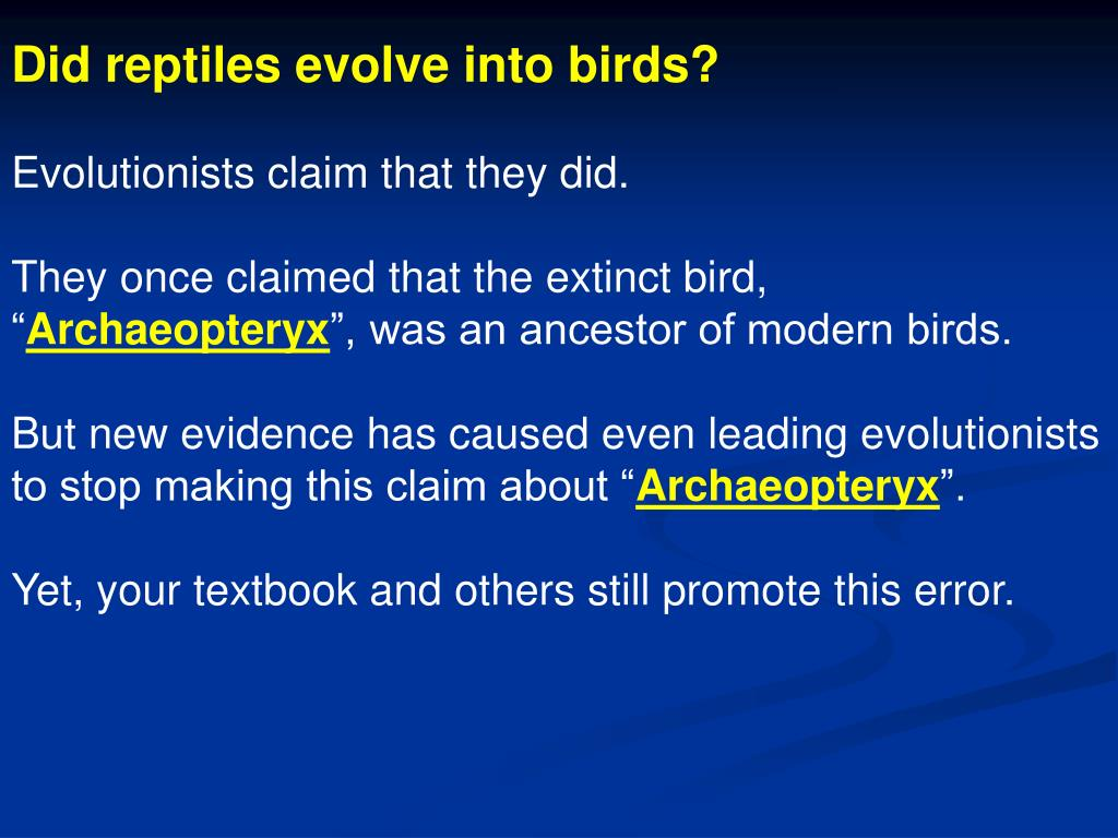 Did reptiles evolve into birds?