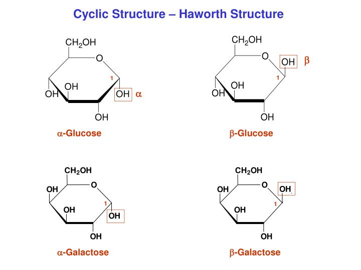 Cyclic Structure – Haworth Structure