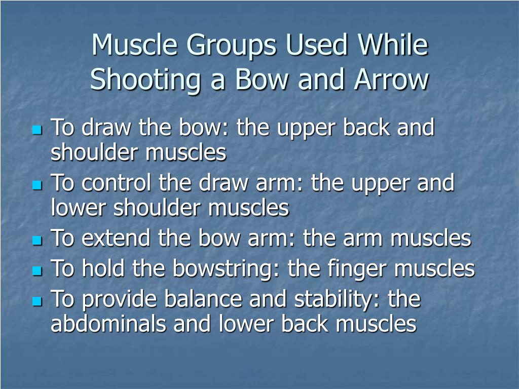 Muscle Groups Used While Shooting a Bow and Arrow