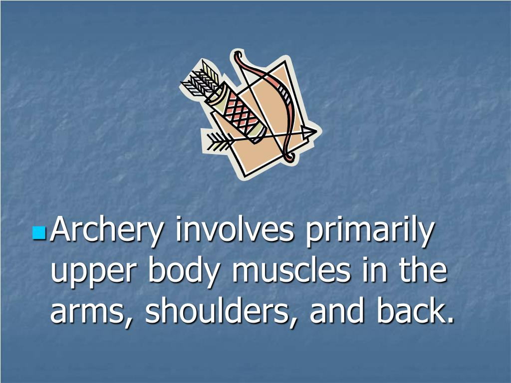 Archery involves primarily upper body muscles in the arms, shoulders, and back.