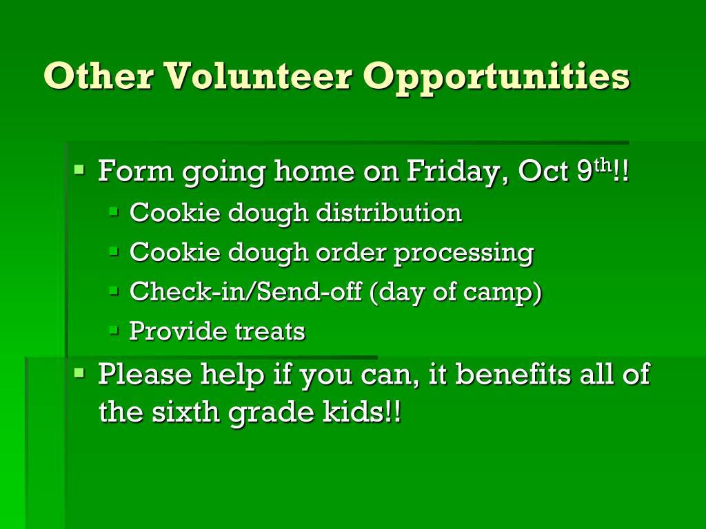 Other Volunteer Opportunities