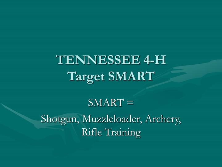 Tennessee 4 h target smart