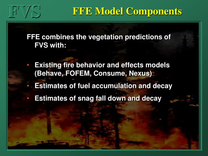 FFE Model Components