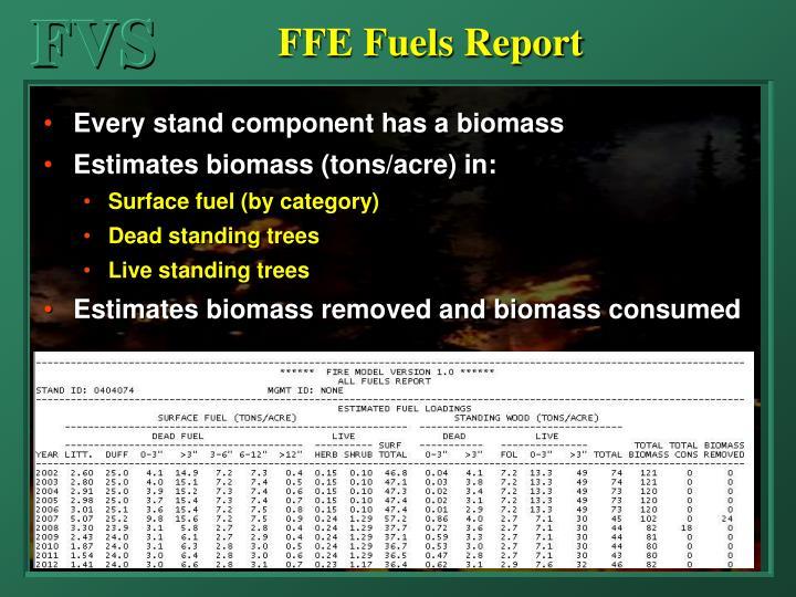 FFE Fuels Report