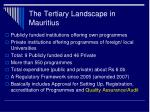 the tertiary landscape in mauritius