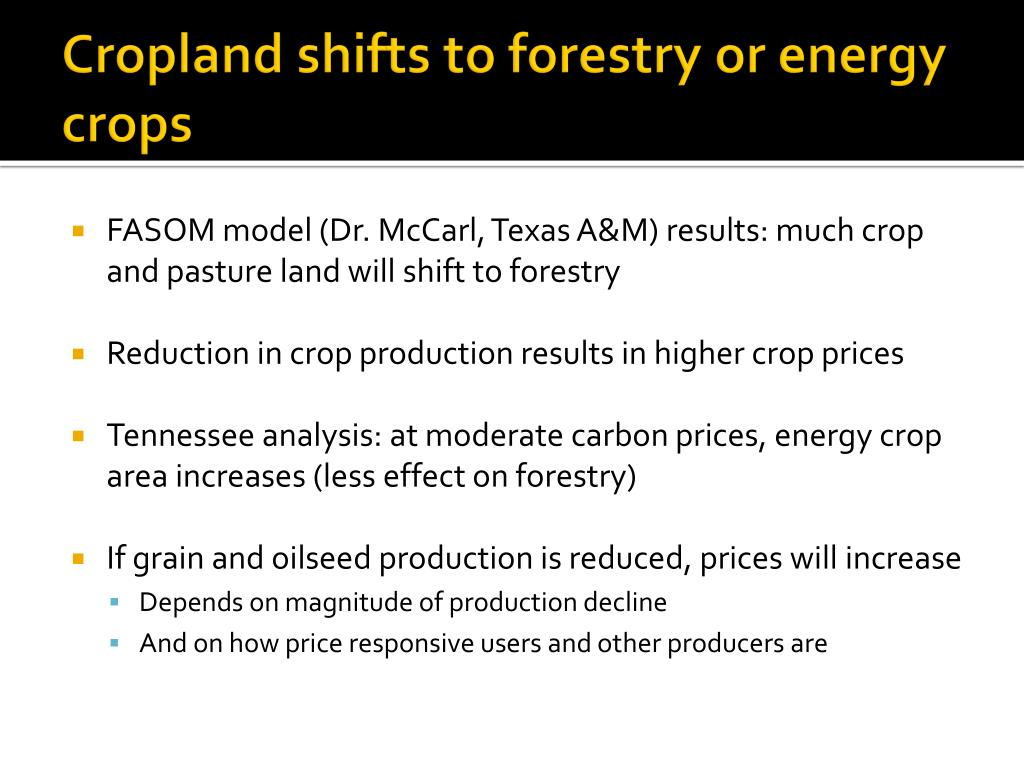 Cropland shifts to forestry or energy crops