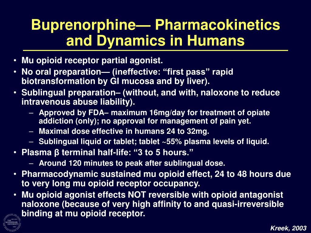 Buprenorphine— Pharmacokinetics and Dynamics in Humans