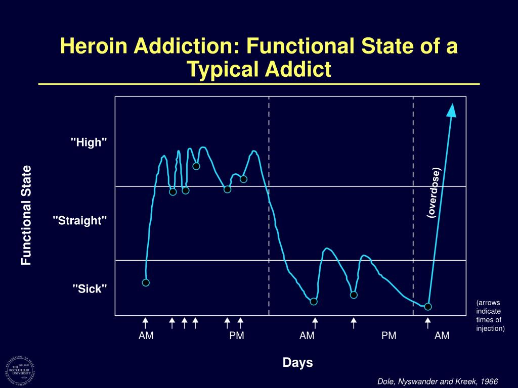 Heroin Addiction: Functional State of a