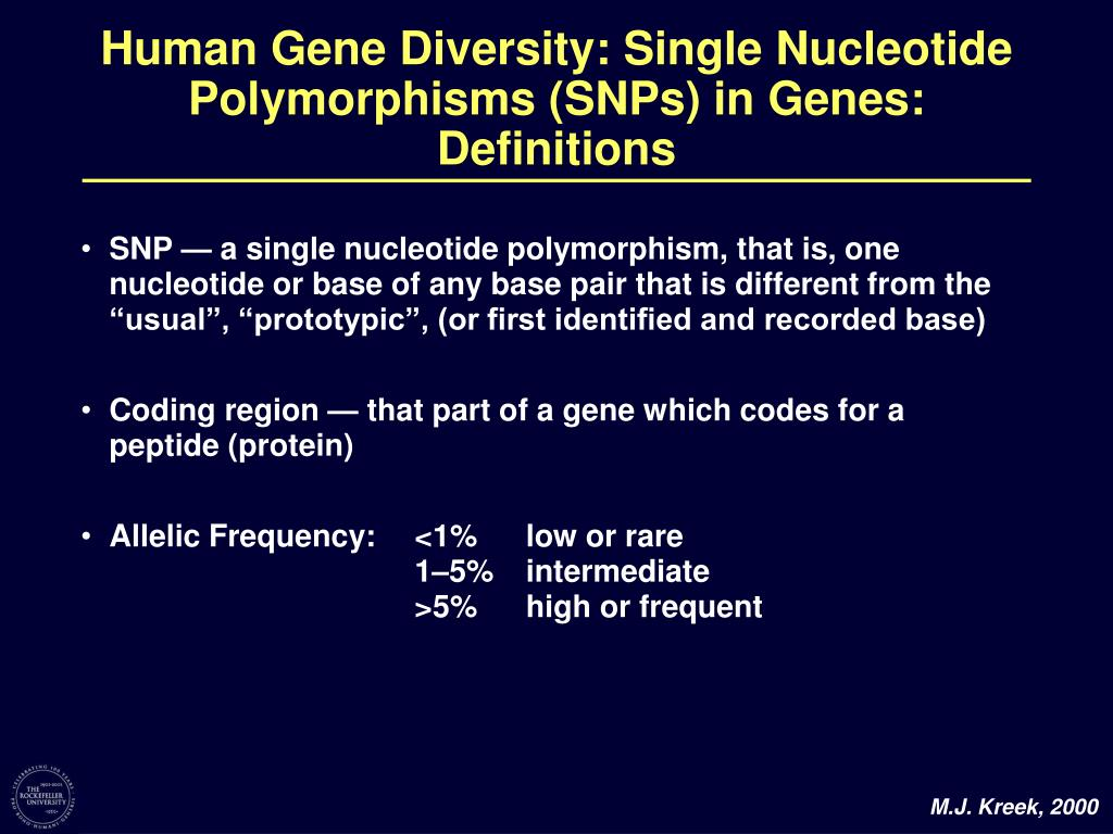 """SNP — a single nucleotide polymorphism, that is, one nucleotide or base of any base pair that is different from the """"usual"""", """"prototypic"""", (or first identified and recorded base)"""