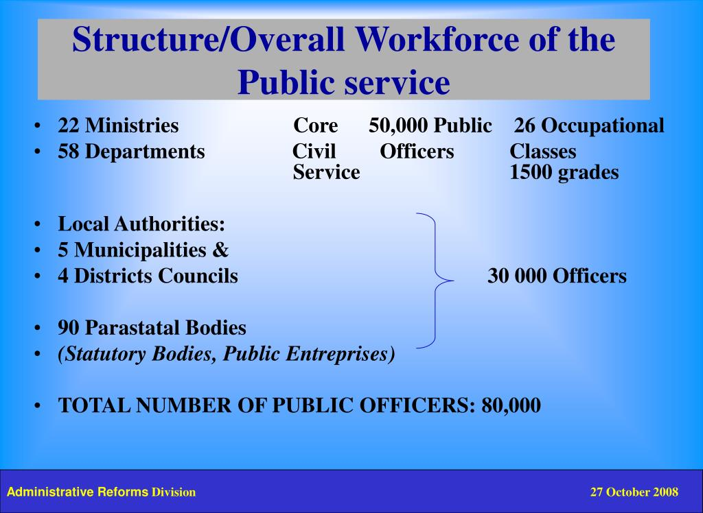 Structure/Overall Workforce of the
