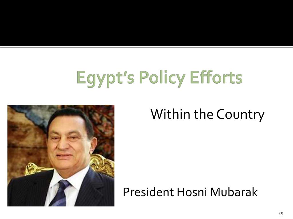 Egypt's Policy Efforts