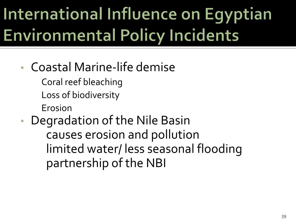 International Influence on Egyptian Environmental Policy Incidents