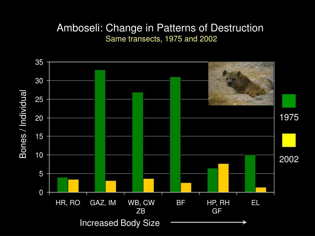 Amboseli: Change in Patterns of Destruction