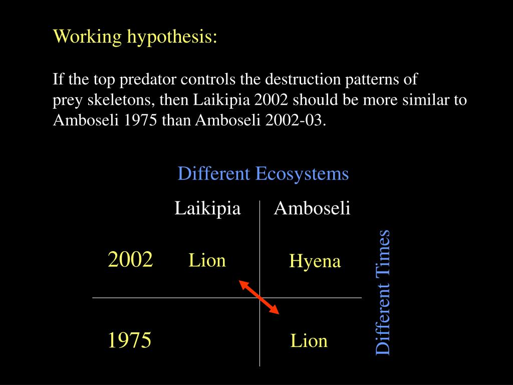 Working hypothesis: