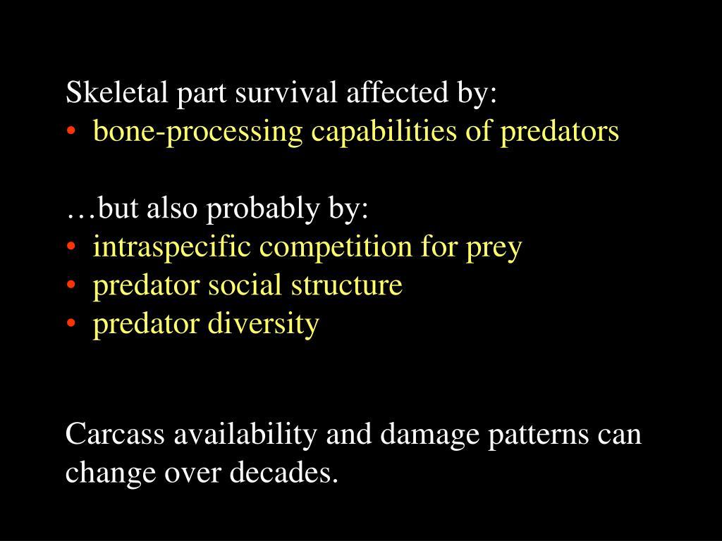 Skeletal part survival affected by: