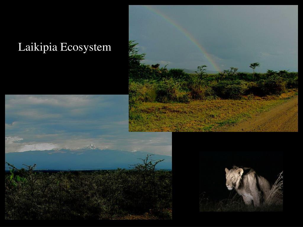 Laikipia Ecosystem