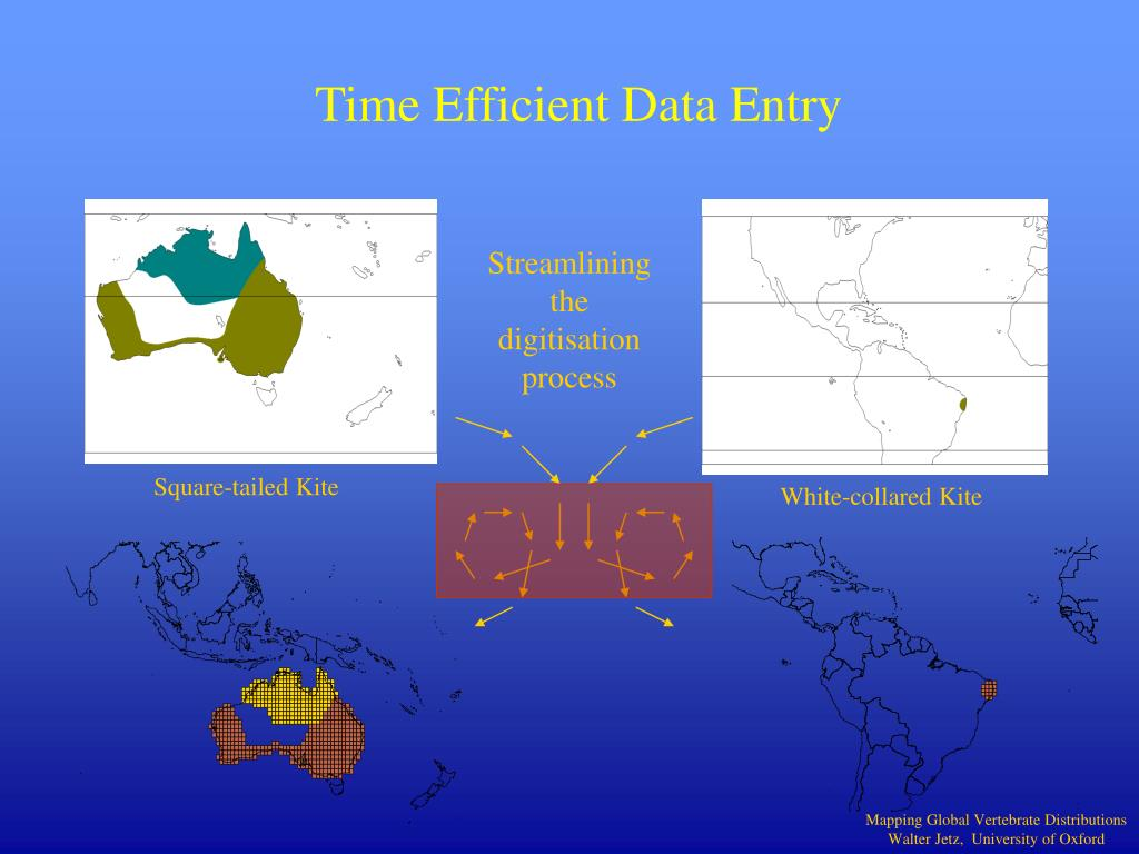 Time Efficient Data Entry