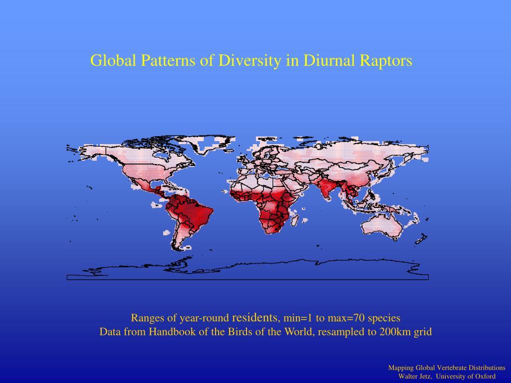 Global Patterns of Diversity in Diurnal Raptors
