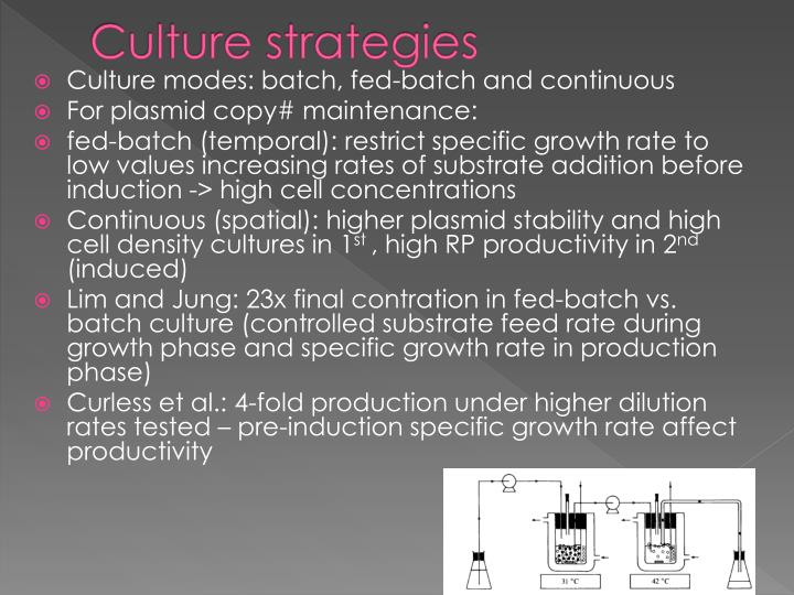 Culture strategies