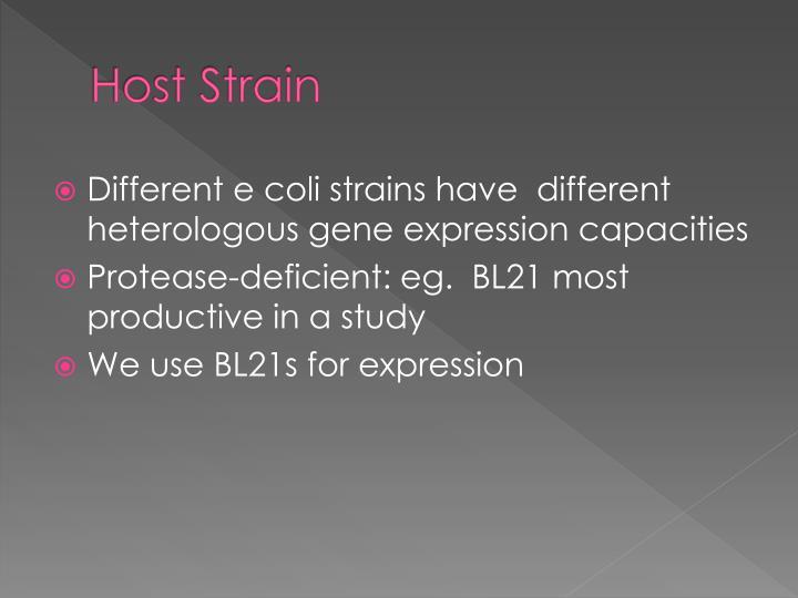 Host Strain