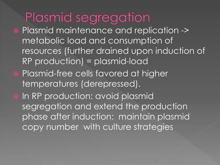Plasmid segregation