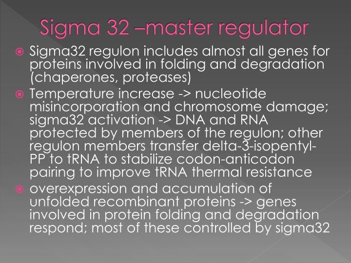 Sigma 32 –master regulator