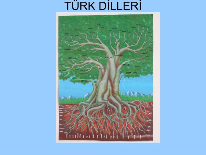 TÜRK DİLLERİ