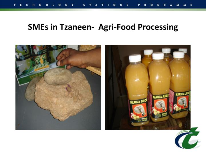 SMEs in Tzaneen-  Agri-Food Processing