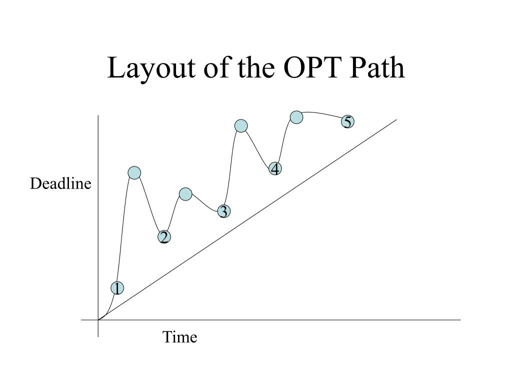Layout of the OPT Path