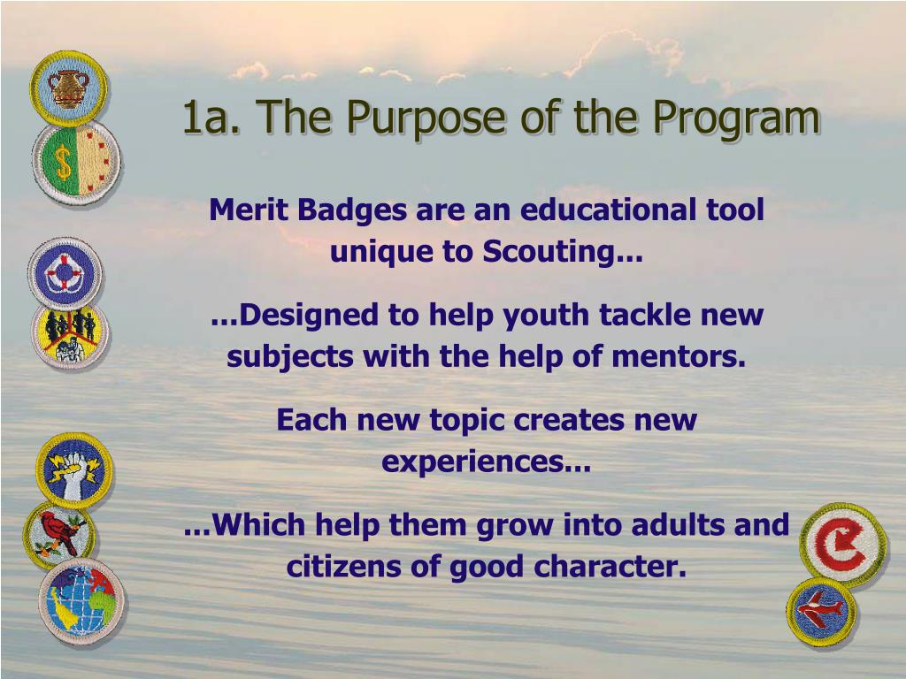 1a. The Purpose of the Program